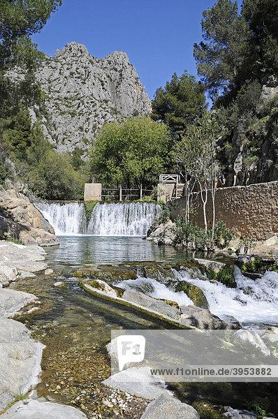 Fonts de l'Algar  Fuentes  Quellen  Fluss  Naturpark  Callosa d'en Sarria  Costa Blanca  Alicante  Spanien  Europa