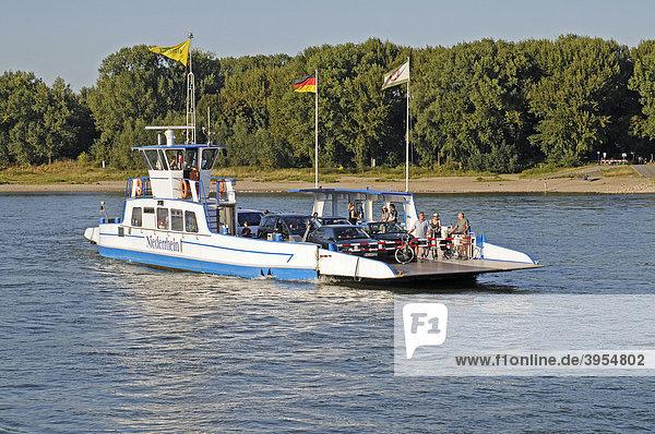 Autofähre  Schiffsverbindung  Zons  Dormagen  Niederrhein  Nordrhein-Westfalen  Deutschland  Europa