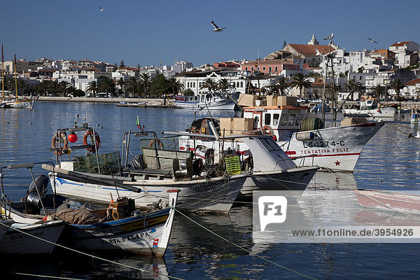 Fischereihafen mit Booten  Lagos  Algarve  Portugal  Europa