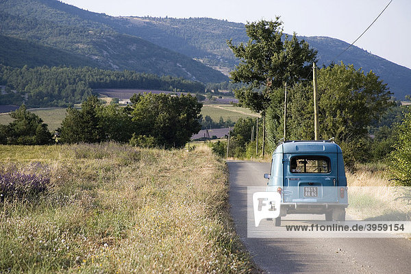 Landschaft ringsum Sault  Vaucluse  Provence  Frankreich  Europa