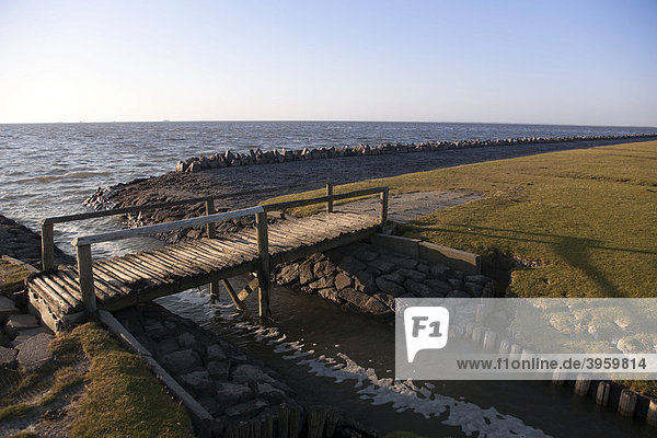 Dike foreland on Nordstrand Island  small wooden bridge crossing draining ditches  Schleswig-Holstein  North Germany  Germany  Europe
