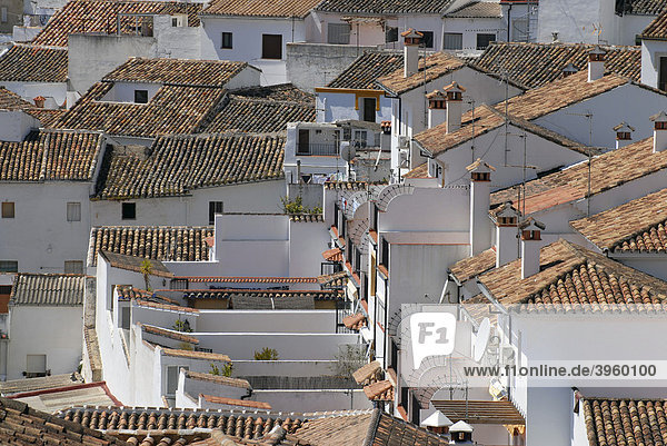 Roofs and chimneys in Ronda  Andalusia  Spain  Europe