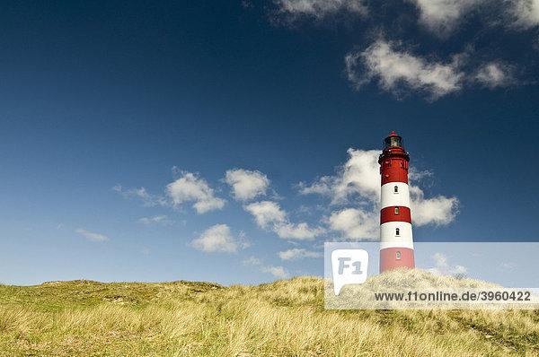 Leuchtturm  Amrum  Schleswig-Holstein  Deutschland  Europa