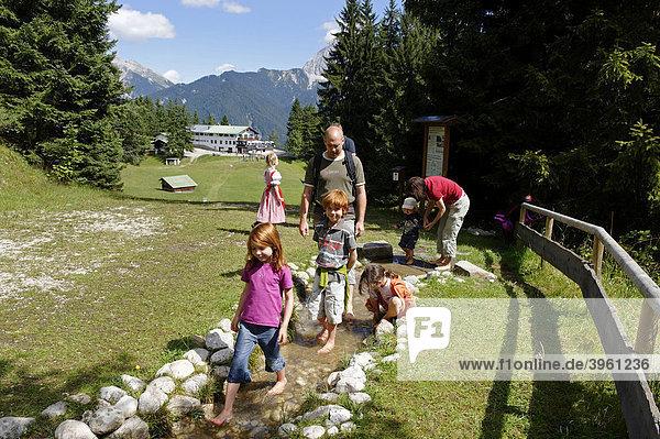 Mittenwalder Barfußpfad am Kranzberg  Mittenwald  Werdenfelser Land  Oberbayern  Bayern  Deutschland  Europa