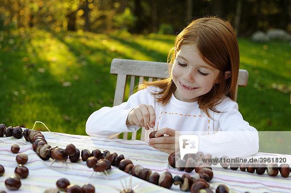 Mädchen spielt im Garten mit Kastanien  Kastanienigel  Kastanienfiguren  Kastanienmännchen