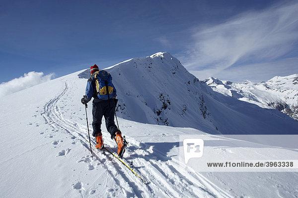 Ski tourer at Hohe Tauern mountain range  Liesertal  Carinthia  Austria  Europe