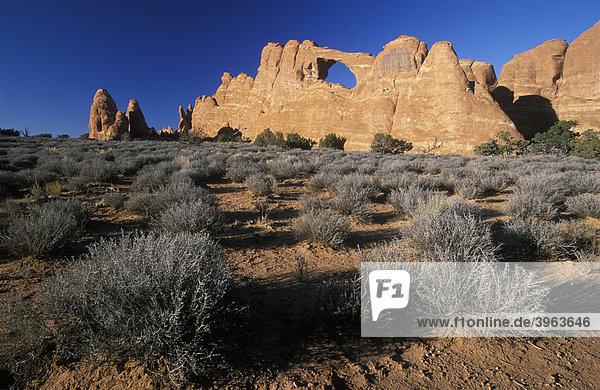 Arches Nationalpark  Utah  USA