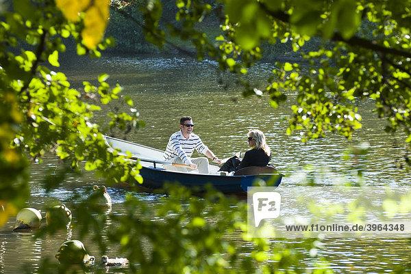See  Ruderboot  Kurpark  Herbst  Wiesbaden  Hessen  Deutschland See, Ruderboot, Kurpark, Herbst, Wiesbaden, Hessen, Deutschland