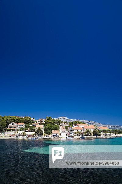 Kroatische Bucht bei Lumbarda  Insel Korcula  Dubrovnik Neretva  Dalmatien  Kroatien  Europa