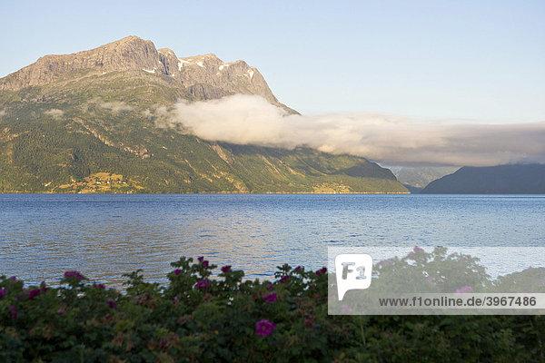 Morning light on Nordfjord  low clouds  Norway  Scandinavia  Europe