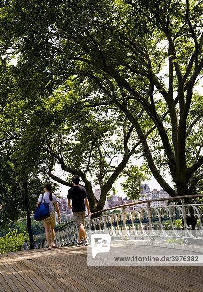Brücke im Central Park  Manhattan  New York City  USA