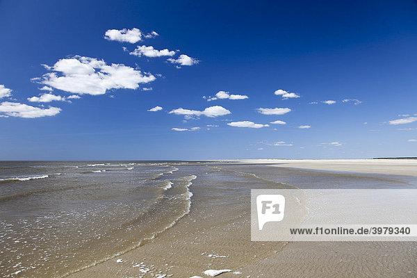 Der breiteste Strand Nordeuropas Havsand auf der Insel R¯m¯  T¯nder  Dänemark  Europa