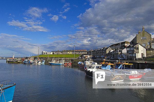 Fischerboote im Hafen  Häuser am Meer  Northumberland  England  Vereinigtes Köngireich  Europa