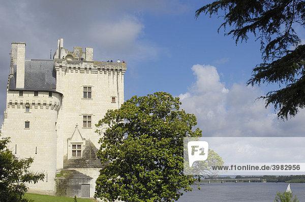 Schloss von Montsoreau  15. Jahrhundert  Maine et Loire  Frankreich  Europa