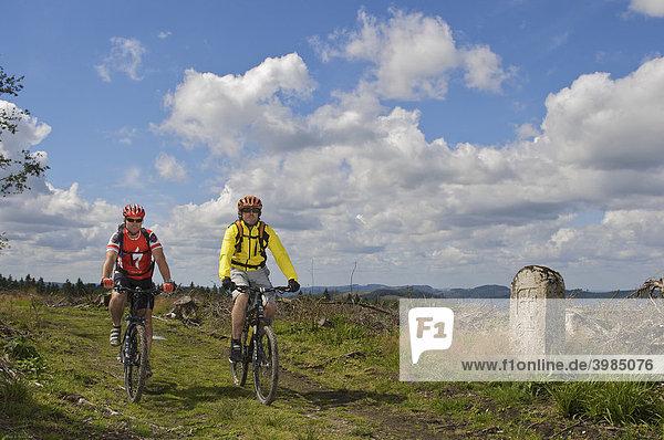 Mountainbike Fahrer an Grenzstein am Grenz-Kammweg  vom Orkan Kyrill entwaldet  zwischen Nordrhein-Westfalen und Hessen nördlich von Willingen  Hessen  Deutschland