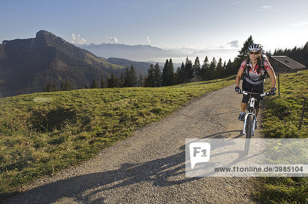 Mountain bike rider  female  on Hochries Mountain  Chiemgau Alps  Bavaria  Germany