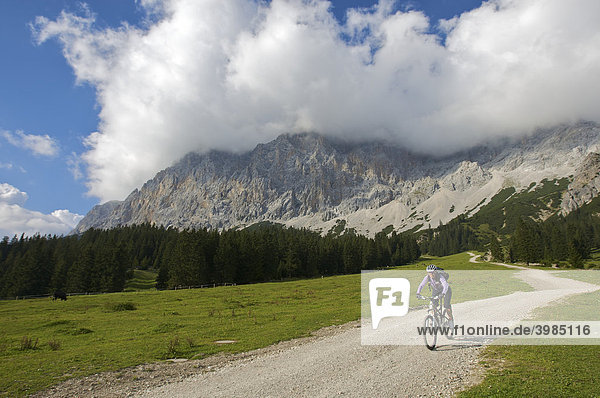 Female mountainbike rider near Ehrwalder Alm alpine meadows  Ehrwald  Tyrol  Austria  Europe