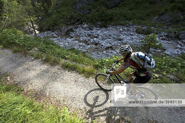 Female mountainbike rider in Altgraben gorge near Wallgau  Upper Bavaria  Bavaria  Germany  Europe