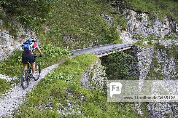 Mountainbike-Fahrerin im Altgraben bei Wallgau  Oberbayern  Bayern  Deutschland