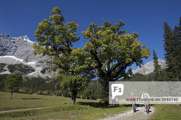 Mountainbiker  Kleiner Ahornboden  Hinterriß  Tirol  Österreich