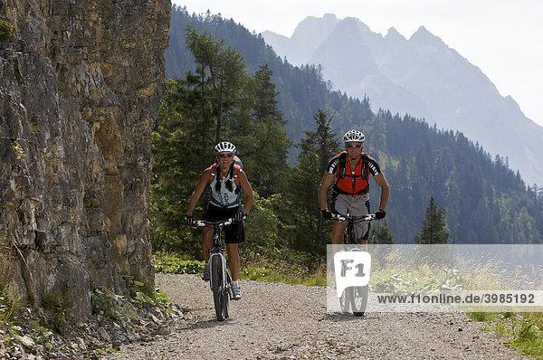 Mountainbike-Fahrerin und -Fahrer nordwestlich der Hoch-Törle-Hütte mit Blick auf Ehrwalder Sonnenspitze  Mieminger Kette  Ehrwald  Tirol  Österreich