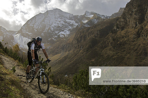 Mountainbiker south of the Karalm pasture in the Pinnistal valley  in the back the Habicht mountain  Tyrol  Austria