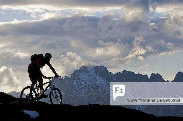 Mountainbike-Fahrer bei der Bruggwirtsalm  bei Kirchdorf  dahinter Wilder Kaiser  Tirol  Österreich