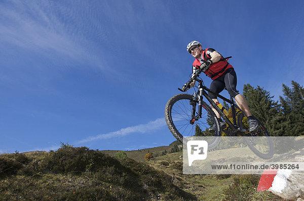 Mountainbike-Fahrer am Gaisberg  Rettenbach  Tirol  Österreich  Europa