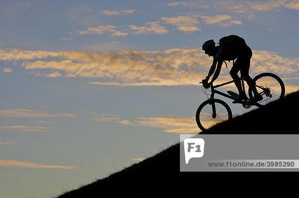 Mountainbike-Fahrer,  Silhouette im Abendlicht auf der Hohen Salve,  Tirol,  Österreich,  Europa