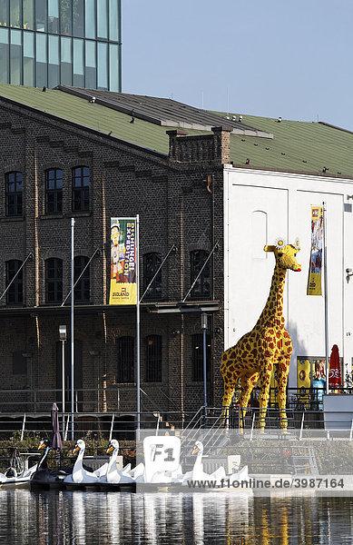 Riesige Giraffe aus Legosteinen  Blickfang vor dem Legoland Discovery Center  Innenhafen  Duisburg  Ruhrgebiet  Nordrhein-Westfalen  Deutschland  Europa Riesige Giraffe aus Legosteinen, Blickfang vor dem Legoland Discovery Center, Innenhafen, Duisburg, Ruhrgebiet, Nordrhein-Westfalen, Deutschland, Europa