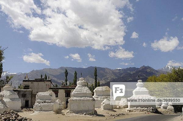 Chörten  religiöse Bauten  in der Nähe des Klosters Shey  dahinter die Zanskar Berg-Gruppe  Ladakh  Indien  Nordindien  Himalaja  Asien