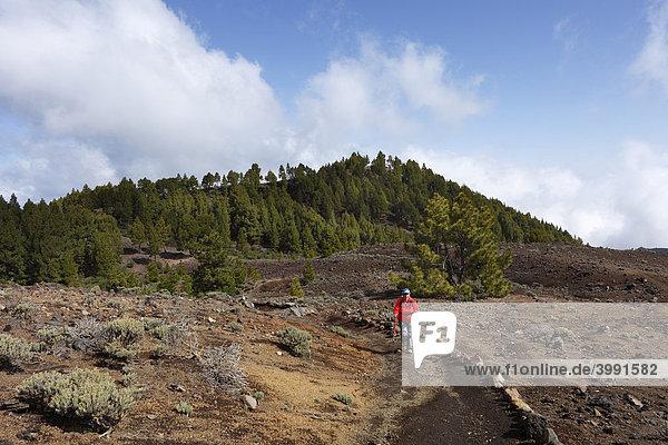 Frau wandert auf Ruta de los Volcanes  Vulkanroute  La Palma  Kanaren  Kanarische Inseln  Spanien  Europa