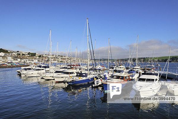 Der Yachthafen von Falmouth  Grafschaft Cornwall  England  Großbritannien  Europa