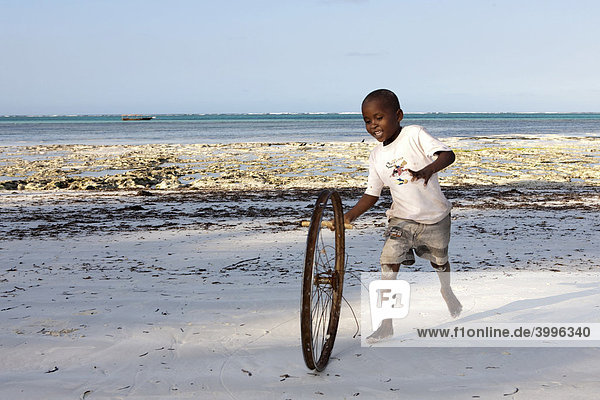 Child playing with an old bicycle wheel on the beach of Pingwe  Zanzibar  Tanzania  Africa