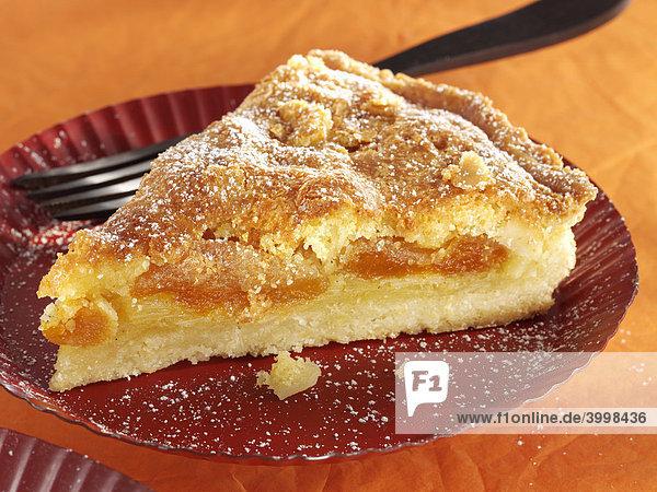 Gezuckerter Aprikosenkuchen auf Teller mit Kuchengabel - Rezeptdatei vorhanden