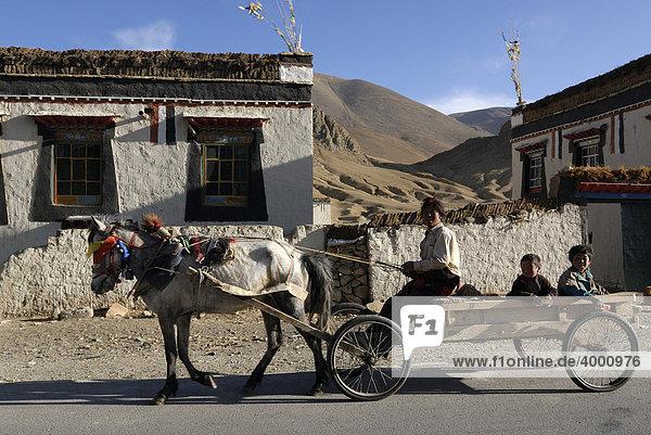 Tibetischer Nomade mit Kindern auf Pferdekutschwagen mit geschmücktem Pferd  Tingri  Tibet  China  Asien