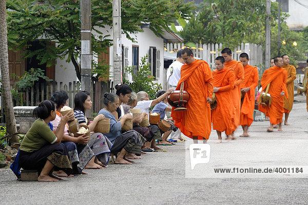 Morgendlicher Almosengang  Bettelgang  Thakbat der Mönche und Novizen der Klosteranlagen in Luang Prabang  Männer und Frauen verteilen Lebensmittel an Mönche  Laos  Südostasien