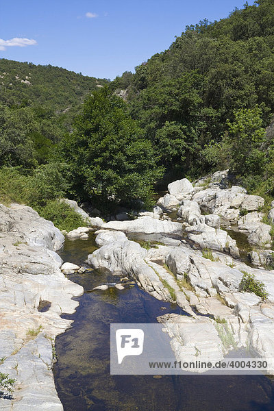 Der Bach Massane fließt durch die Gorges de Lavall in SorËde  DÈpartement PyrÈnÈes-Orientales  im Roussillon  Region Languedoc-Roussillon  Südfrankreich  Frankreich