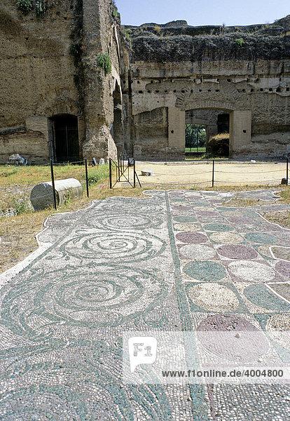 Mosaik-Fußboden  Caracalla-Thermen  Rom  Latium  Italien  Europa