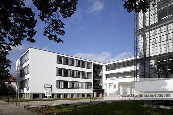 Bauhaus Dessau  Dessau-Roßlau  Sachsen-Anhalt  Deutschland  Europa