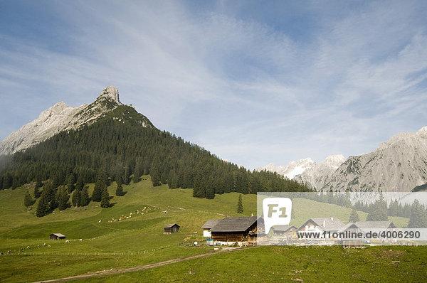 Walder-Alm  dahinter Karwendel-Gebirge  Gnadenwald  Tirol  Österreich  Europa