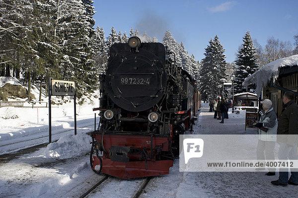 Harzer Schmalspurbahn mit Dampflok  Sachsen-Anhalt  Deutschland