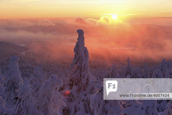 Blick vom Brocken auf eine prächtige  dick eingeschneite Winterlandschaft bei Sonnenuntergang  Sachsen-Anhalt  Deutschland