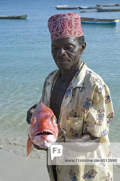 Ein Fischer mit einem frisch gefangenen Roten Schnapper (Lutjanus campechanus)  Masoko Bay in Kilwa  Tansania  Afrika
