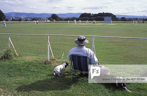 Mann mit Hunden beobachtet Cricket Spiel  Sport  Phoenix Cricket Club  Phoenix Park  Dublin  Irland