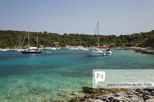 Bucht  Insel Palmizana  Dalmatien  Kroatien  Adria  Mittelmeer  Europa