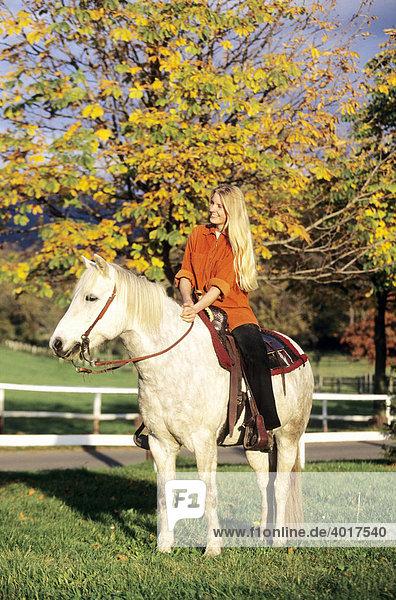 ein blondes mädchen reitet auf einem pferd, island pony