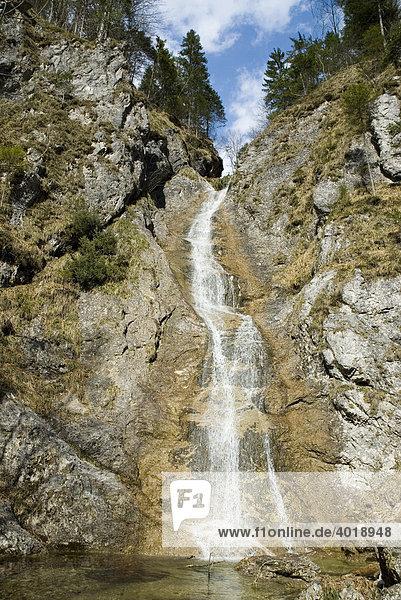 Der Wasserfall Schleierfall  Nationalpark Kalkalpen  Oberösterreich  Österreich  Europa