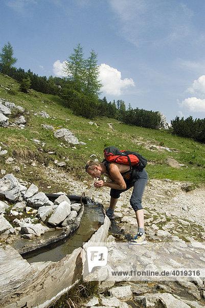 Wanderer erfrischt sich an einem Holzbrunnen  Admont  Steiermark  Österreich  Europa