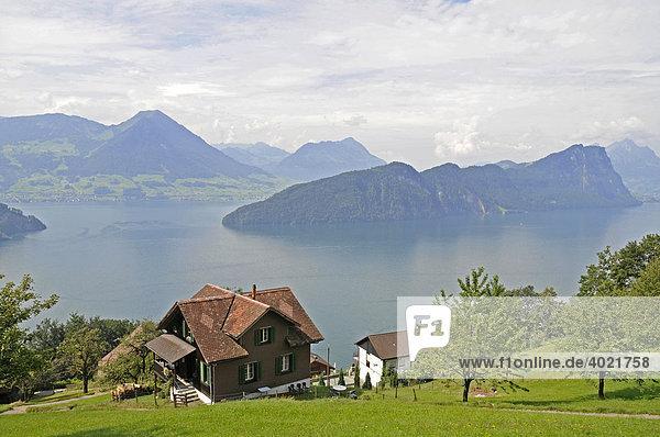 Bauernhof  Berge  Aussicht von dem Berg Rigi  Vierwaldstätter See  Vitznau  Kanton Luzern  Schweiz  Europa Kanton Luzern